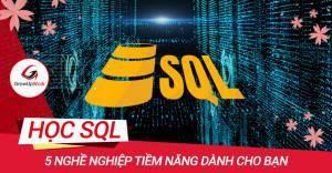 5 nghề nghiệp tiềm năng dành cho người học SQL