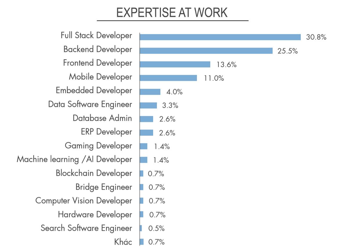 Vietnamworkからの報告データ_Programing_Skill