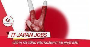 Các vị trí công việc ngành IT tại Nhật Bản