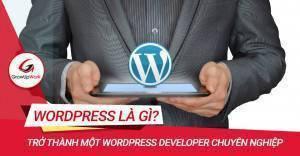Làm thế nào để trở thành một Wordpress Developer chuyên nghiệp?