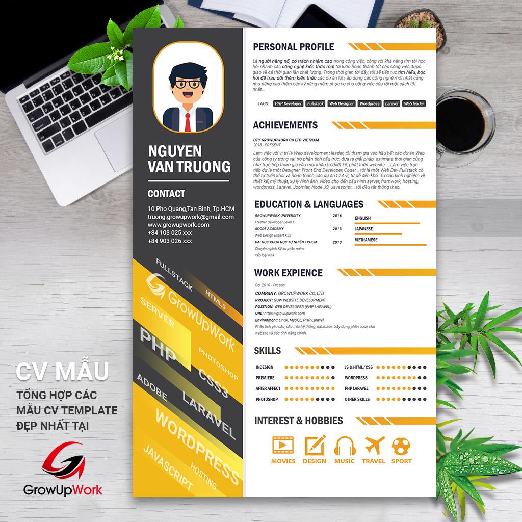Mẫu cv đẹp và chuyên nghiệp ngành IT - Web developer